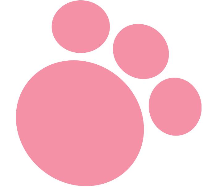 Littlest Pet Shop Style Guide Design - Panel 1