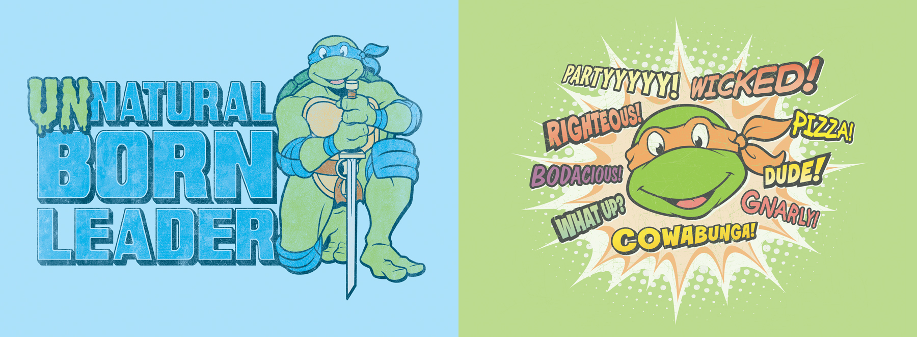 Teenage Mutant Ninja Turtles Classic Style Guides - ID 4