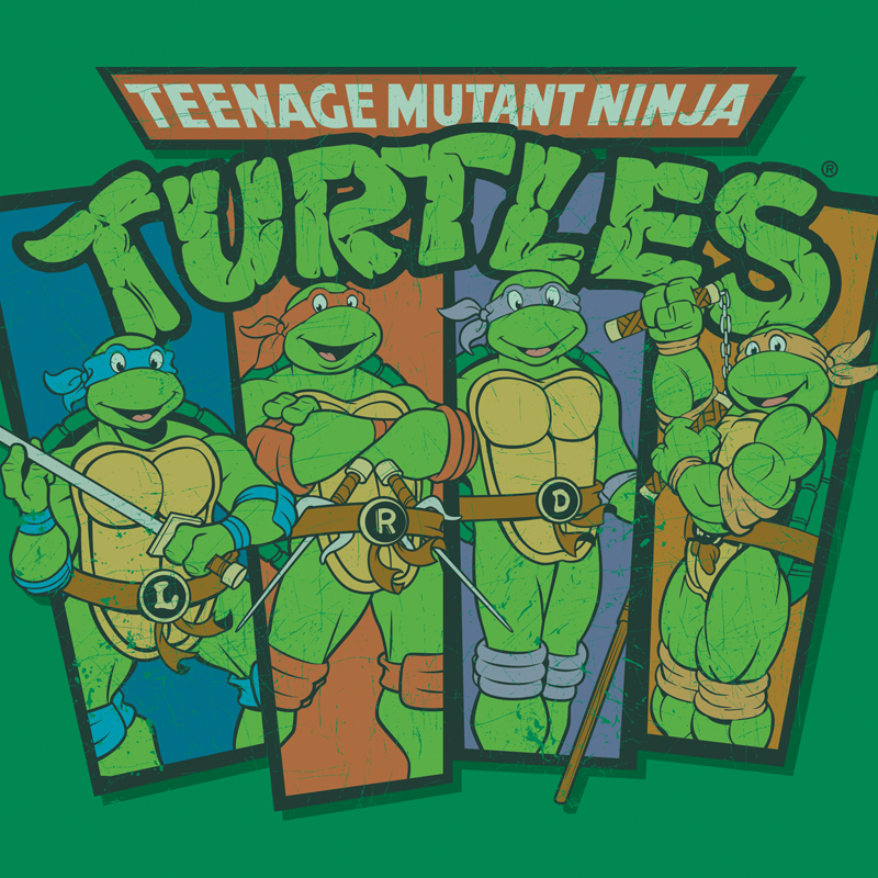 Teenage Mutant Ninja Turtles Classic Style Guides - Portfolio